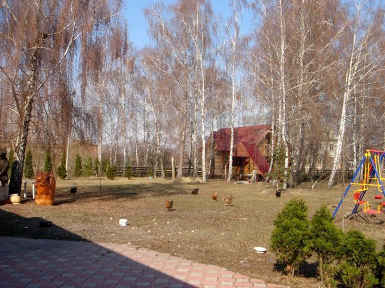 Продаётся дом 300 кв.м. - с. Подгорцы, Обуховский р-н (07)