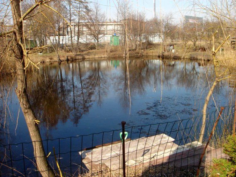Продаётся дом 300 кв.м. - с. Подгорцы, Обуховский р-н (12)